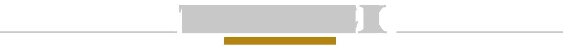 Logo Technolex